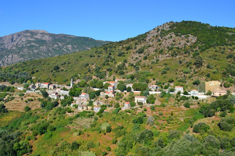 Cargiaca (Carghjaca)