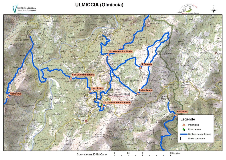 Olmiccia (Ulmiccia)