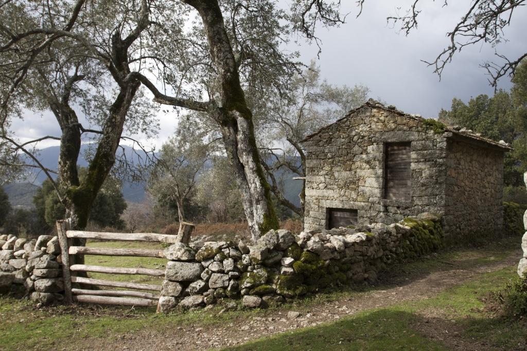 Strada Antica A Gravona - Carbuccia/Vizzavona