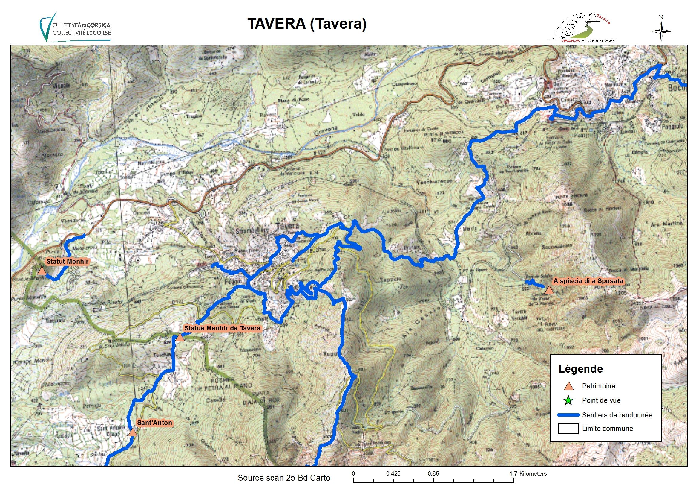 Tavera (Tavera)