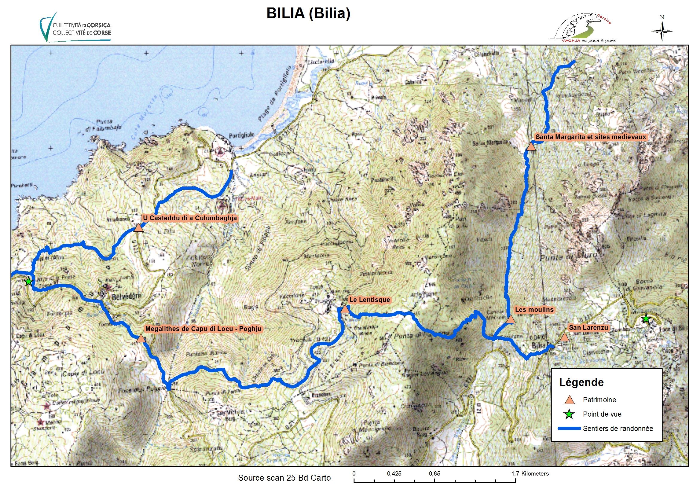 Bilia (Bilia)