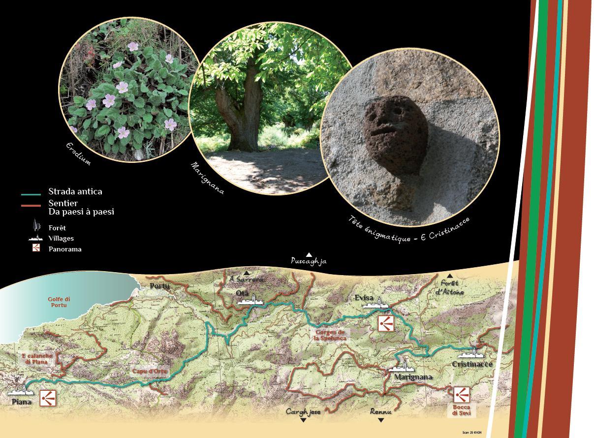Strada Antica Di Petra è di Legnu - Piana / Marignana