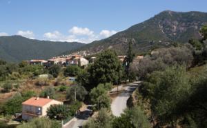 Cannelle d'Orcino (Canedde d'Urcinu)