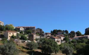 Zigliara (Ziddara)